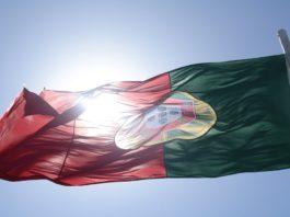 study portugal startup ecosystem