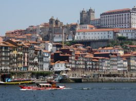 european young entrepreneurs porto
