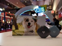 findster amazon pet tracker